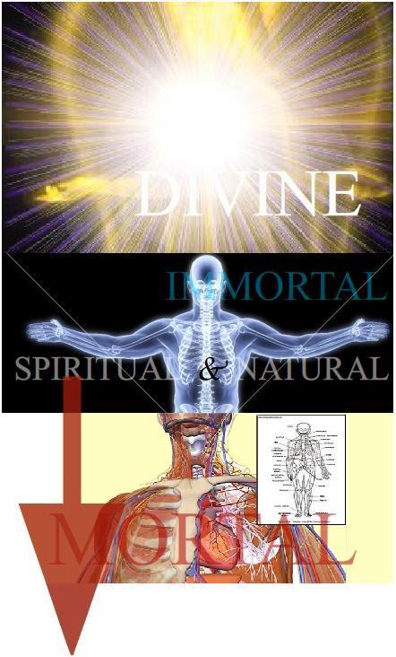 divine revelation of spiritual warfare pdf