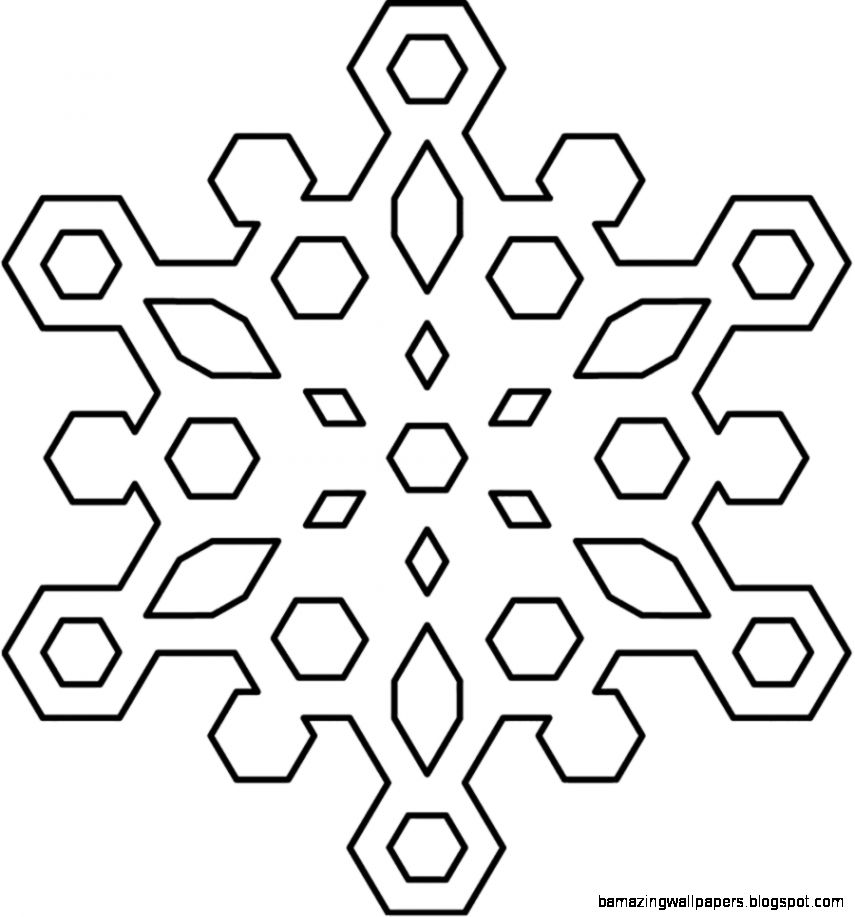 Best Black And White Snowflake 24389