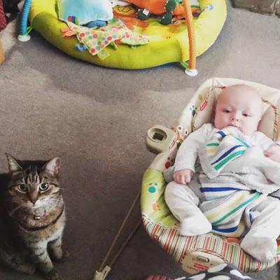 Me, Being Mummy : Week 19 – Teething and Snuffles