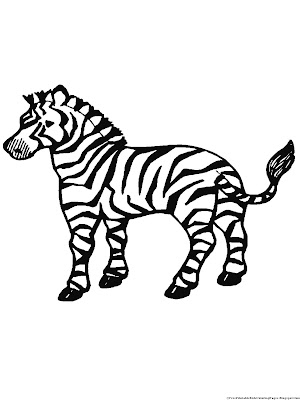 Free Coloring Pages Zebra