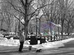 Une bulle de savon à Central Park