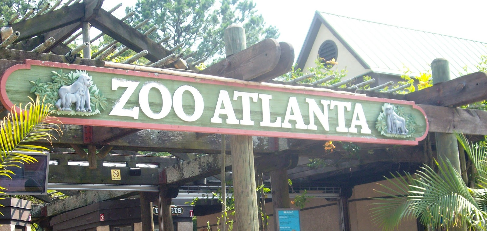 Zoo Atlanta is an Association of Zoos and Aquariums accredited zoological park in Atlanta, Georgia. Zoo Atlanta houses over 1, animals representing more than species. The zoo is home to the nation's largest zoological collections of gorillas and orangutans and is one of only four zoos in the U.S. currently housing giant pandas.