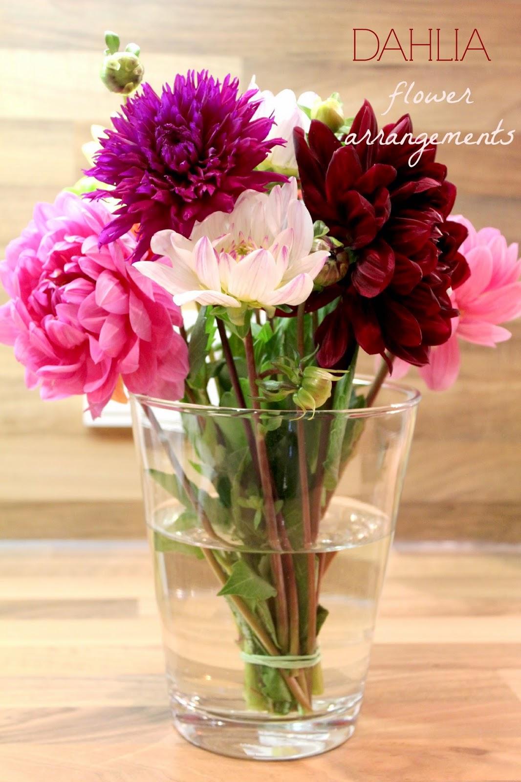 Dahlia flower arrangements vanilla lash dahlia flower arrangements izmirmasajfo