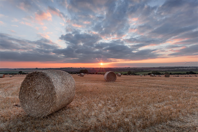 Warm light fills the Cotswold landscape at sunset by Martyn Ferry Photography