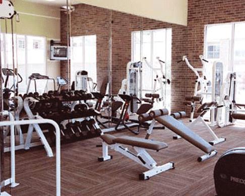 Espejos trucados en los gimnasios aprende fitness - Espejos para gimnasios ...