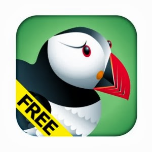 how to use flash on ipads, can you open flash websites on ipads, flash on ipads, puffin free