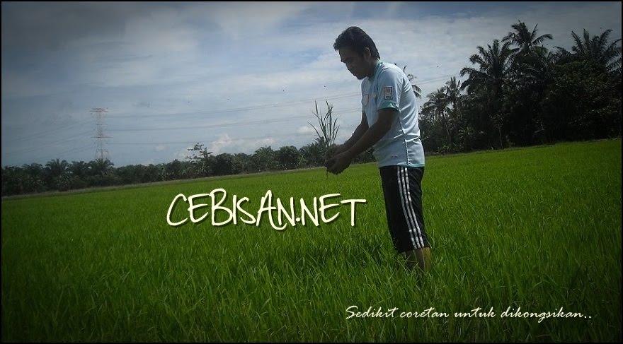 CEBISAN.NET