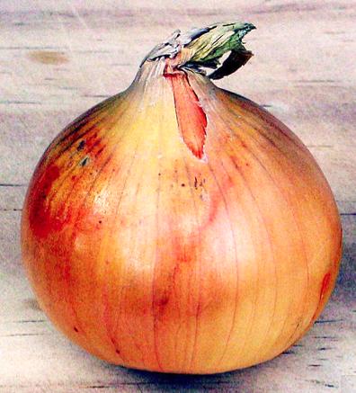 http://fr.wikipedia.org/wiki/Oignon