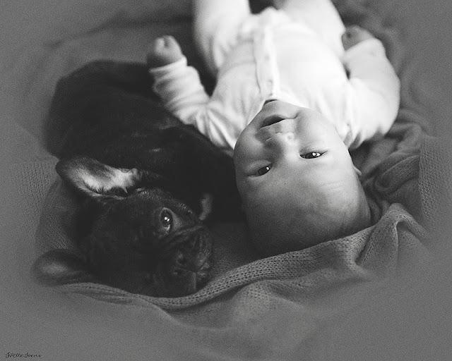 Green Pear Diaries, fotografía, Ivette Ivens, Dylan, Farley, bebé, bulldog, mejores amigos