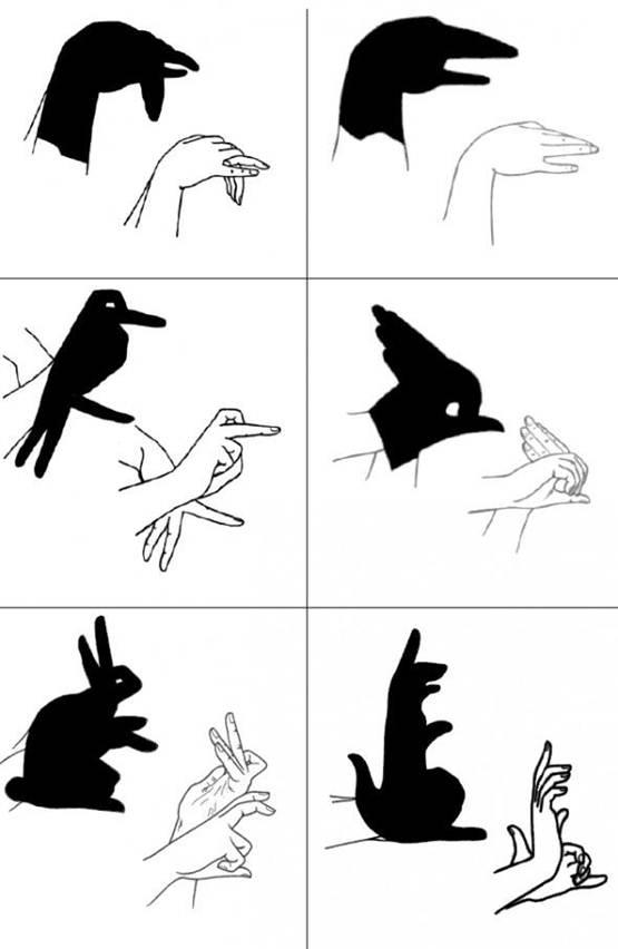 permainan bayangan tangan, seni bayangan tangan, trik bayangan tangan, teknik bayangan tangan, bayangan tangan unik, cara membuat bayangan tangan unik, video bayangan tangan, youtube bayangan tangan,