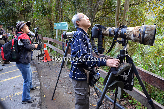 Borneo Bird Festival Photography