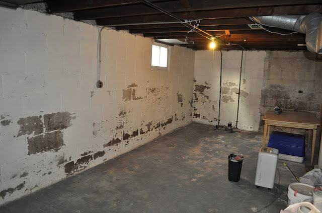 basement, dry lok, painting, DIY, reno, painting the basement, sealing