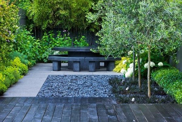 jenis tanaman untuk taman minimalis