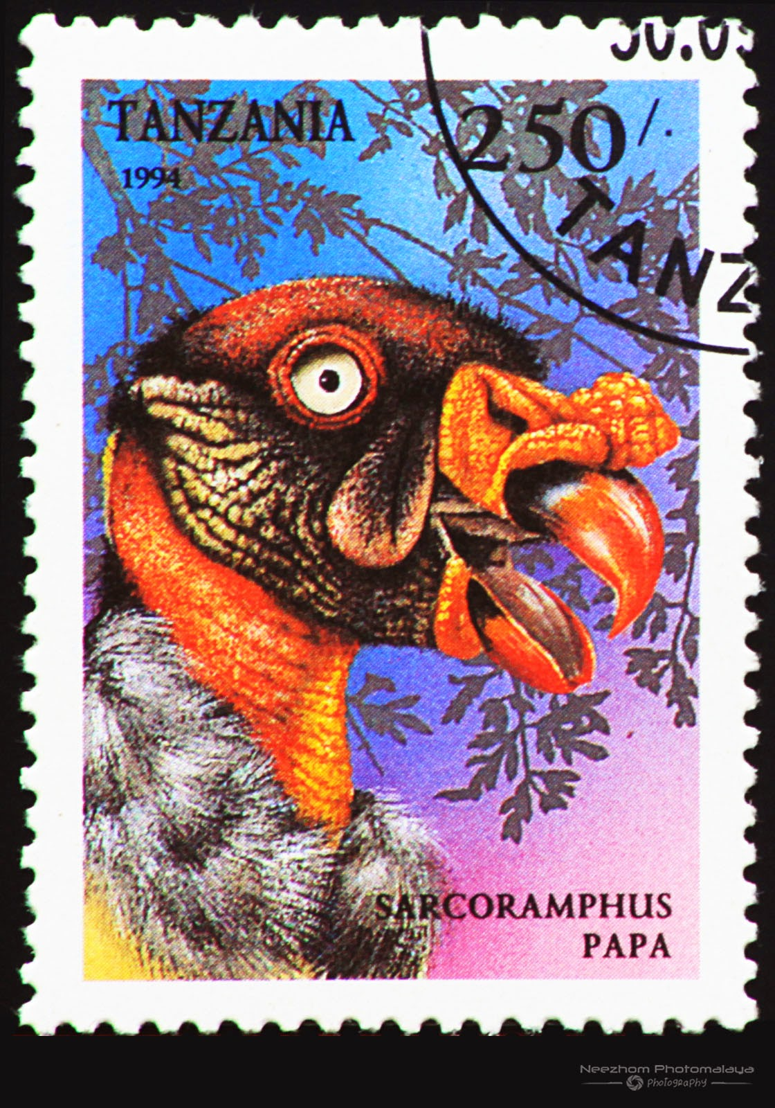 Tanzania 1994 Birds of Prey stamp - King Vulture (Sarcoramphus papa) 250 s