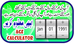 Age Calculator Online