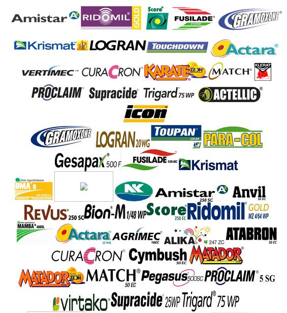 Lowongan Salesman & Driver PT. Prima Agro Network, Natar, Lampung Selatan