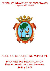 PROGRAMA CONJUNTO DE GOBIERNO CDeI-PSOE