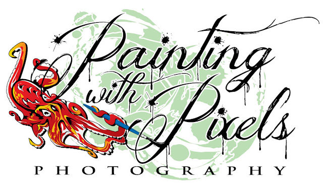 Painting With Pixels Photography