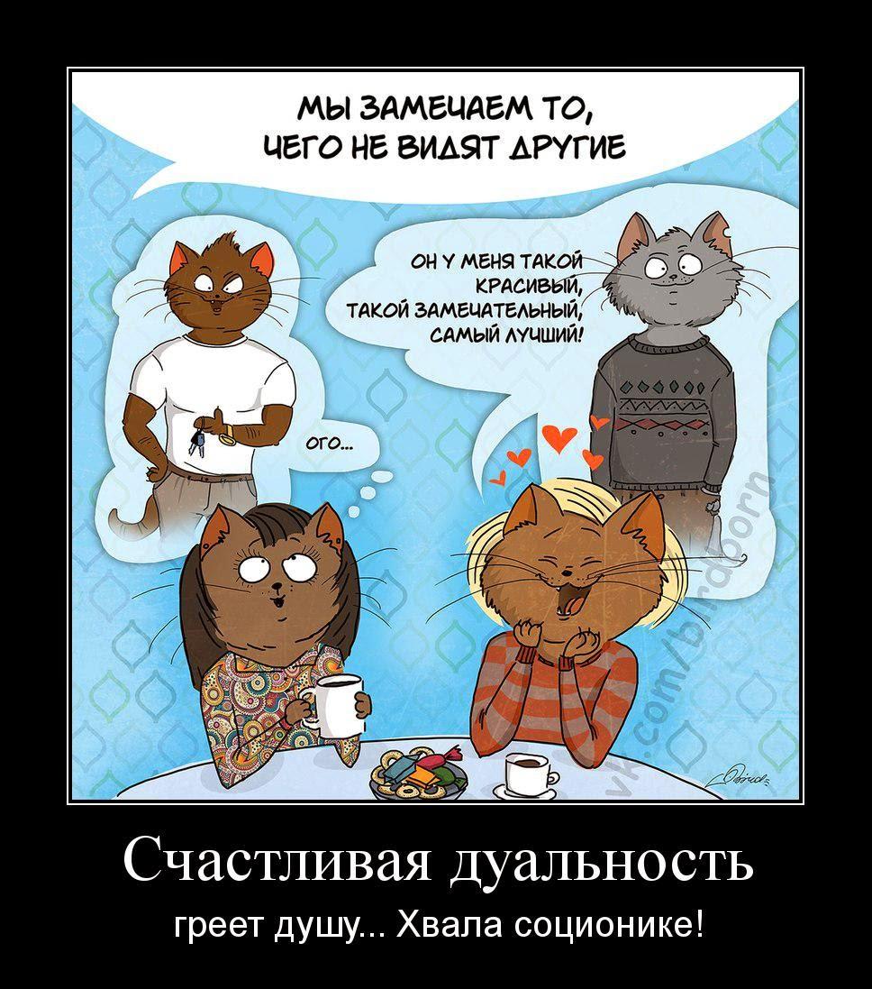 Соционика от Стратиевской: Конфликтные отношения
