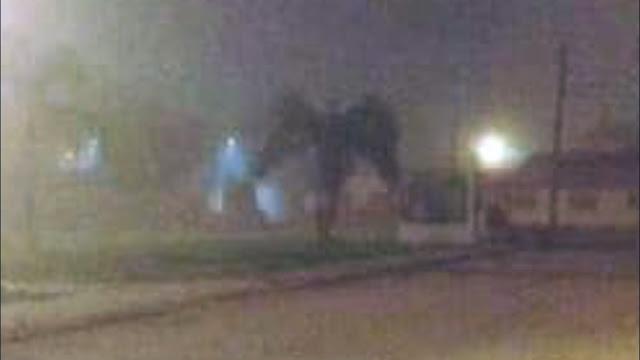 Nephilim-like étant repéré dans les rues de Phoenix, en Arizona ?