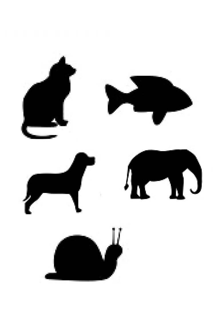 Siluetas de animales para imprimir imagui - Siluetas para imprimir ...