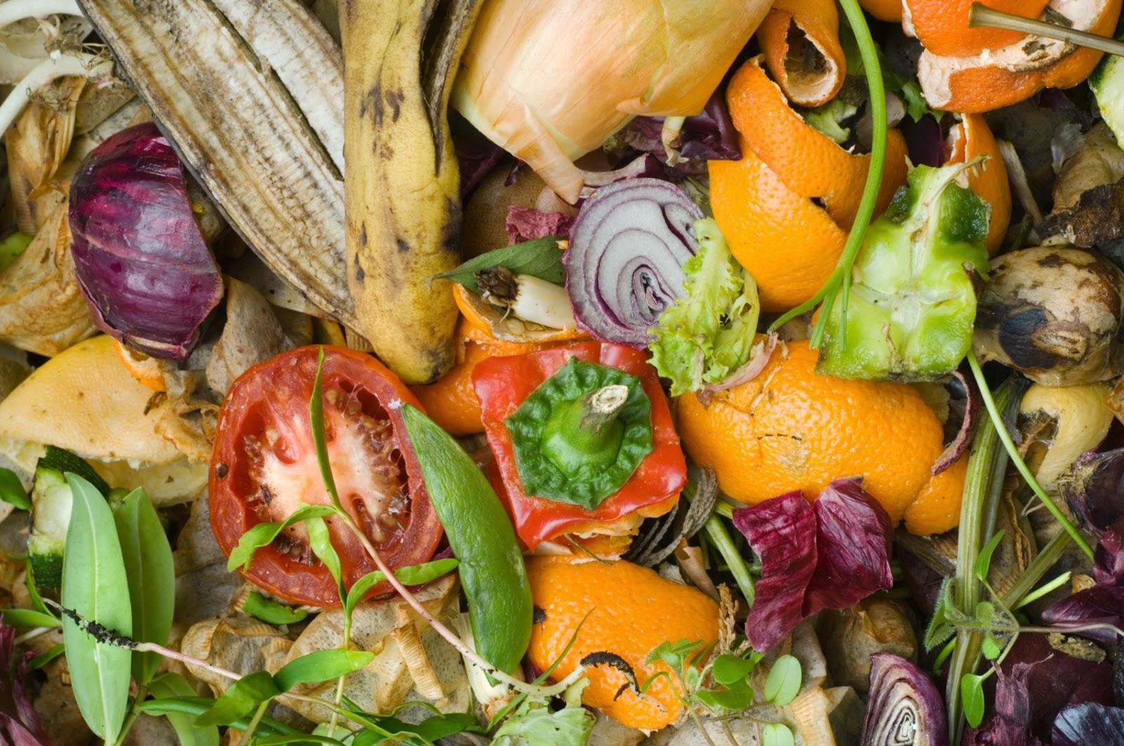 contoh sampah organik rumah tangga