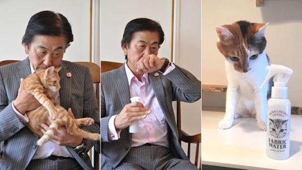 дезодорант с запахом головы кота