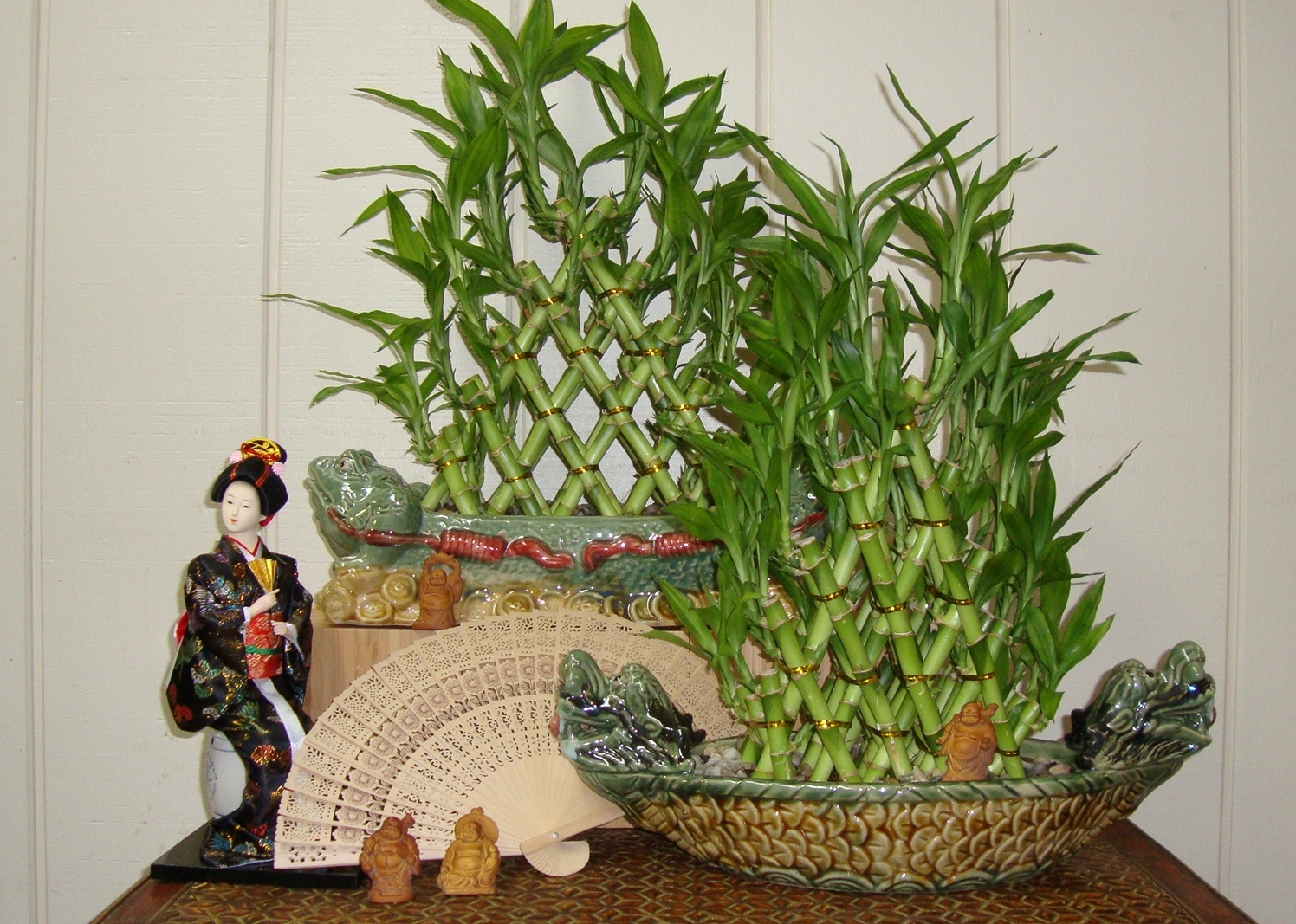 The enchanted petal lucky bamboo braided lucky bamboo canes are buycottarizona Image collections