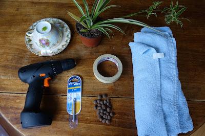 DIY-plante-dans-tasse