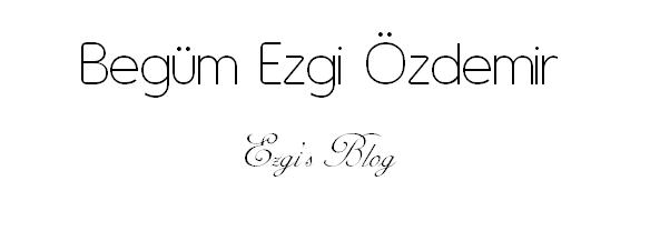 Ezgi's Blog