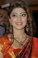 Pranitha in Lovely Kanjiwaram Saree ((23)000 000.jpg
