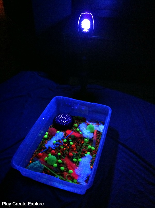 I Set Up A Lamp (uncovered) With A Black Light Bulb On The Living Room  Floor. I Put The Bin On A Sheet For Easy Cleanup.