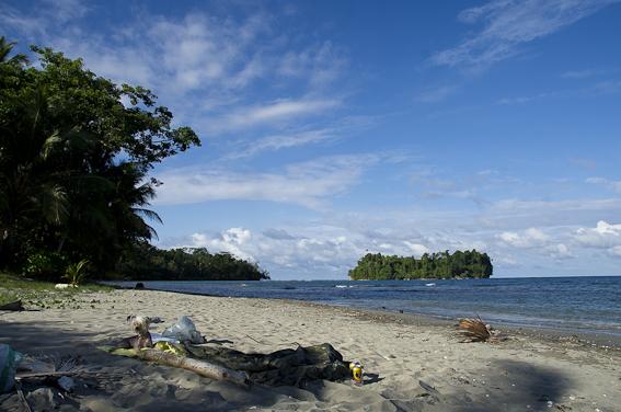 smukke caribien nu med billeder.