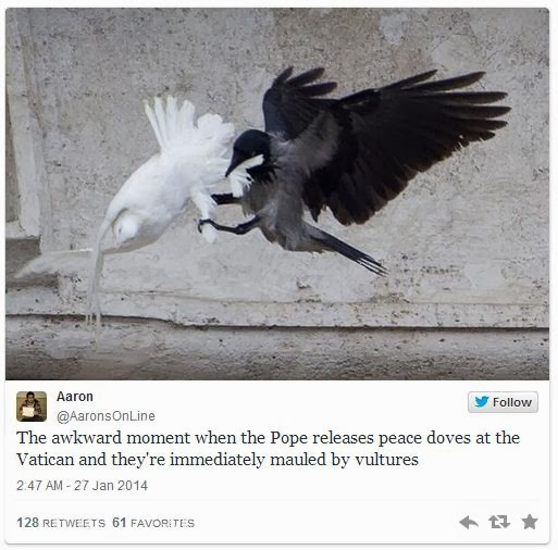 Bad Omen? Pope's Doves Of Peace For Ukraine Attacked By Angry Birds