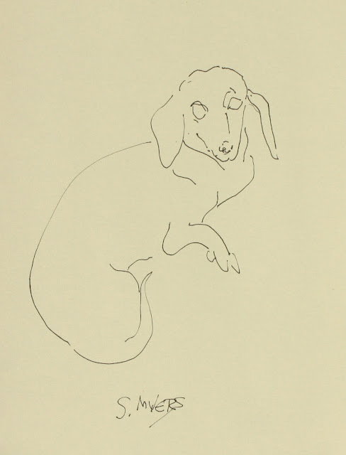 Dachshund, reclining, study, art, dog, line-drawing, arte, Sarah Myers, S. Myers, ink, drawing, sketch, spontaneous, rapid, paper