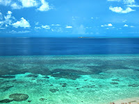 Apo Reef Natural Park Is A Coral Reef In Sablayan, Philippines