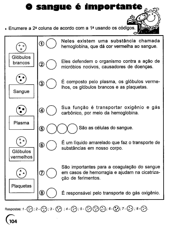 Jornal ponto com 21 atividades corpo humano 3 4 5 6 for Temperatura frigo da 1 a 7