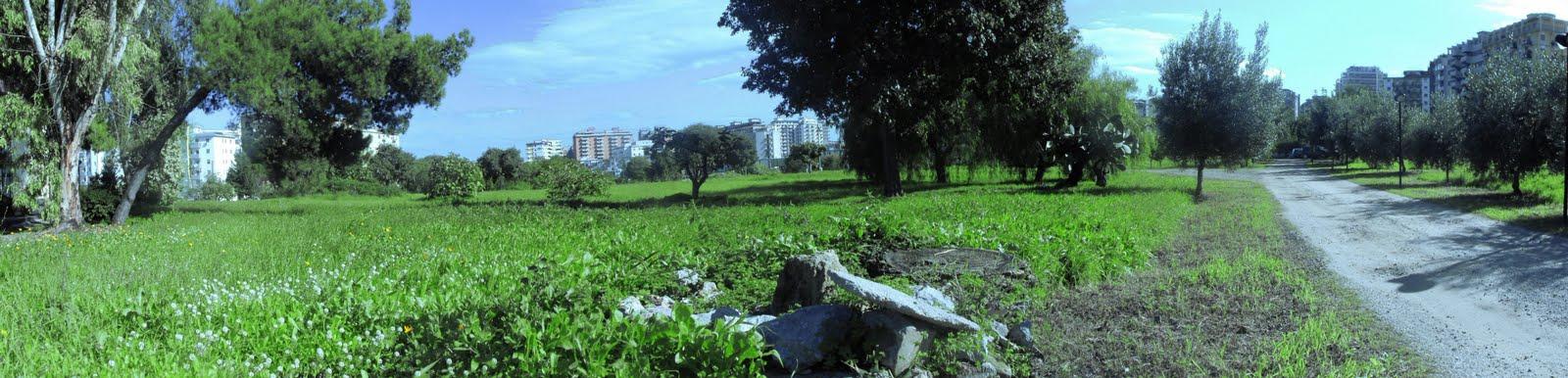 Un Nuovo Parco per Palermo