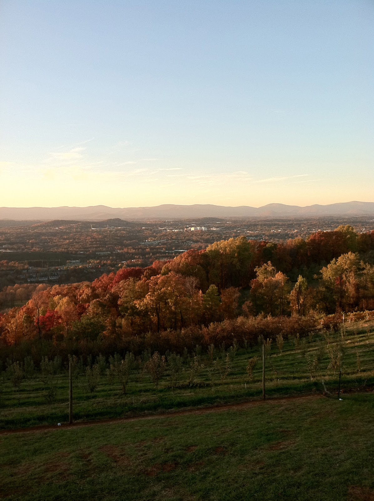 Blue Ridge Mountains 39 Majesty