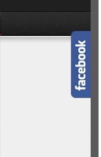 Facebook Expansível do Lado Direito do Blog