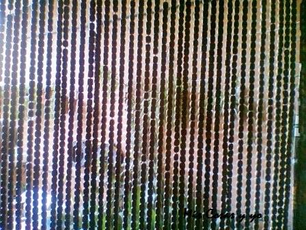 Es lo que hay mis cosas y yo cortinas exteriores hechas - Cortinas de cuentas ...