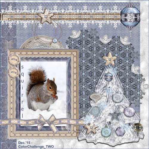 Dec.'15 – Squirrel  in the snow