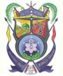 Escudo del Distrito Alto Apure
