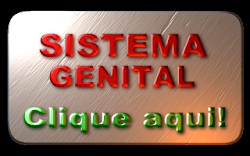 SISTEMA GENITAL