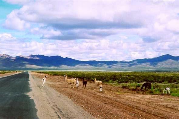 Altiplano+Andino - AVENTURA: DISSERAM QUE NUNCA CHOVE, E EU ACREDITEI