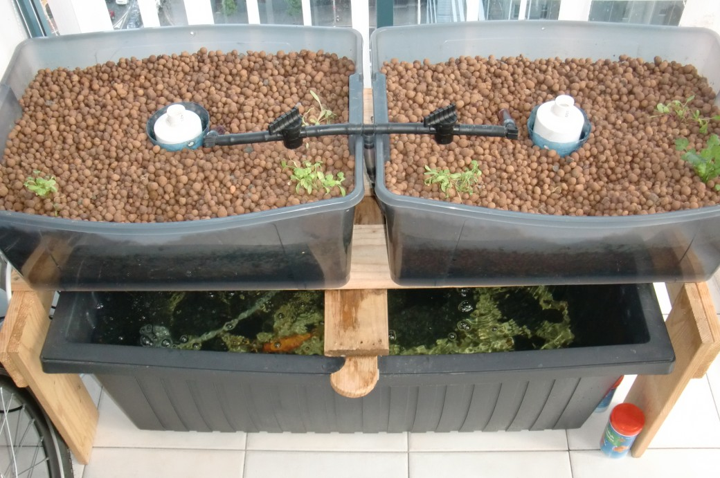 Urban green survival aquaponics - Jardin balcon appartement ...