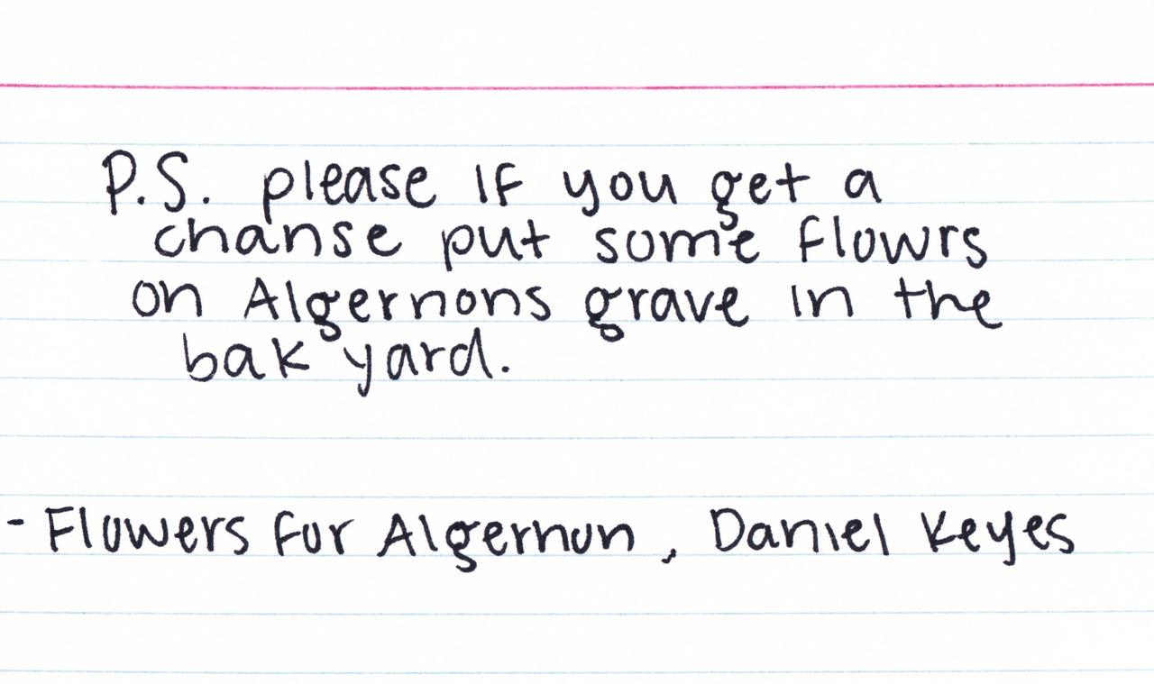 the relentless reader flowers for algernon by daniel keyes flowers for algernon by daniel keyes