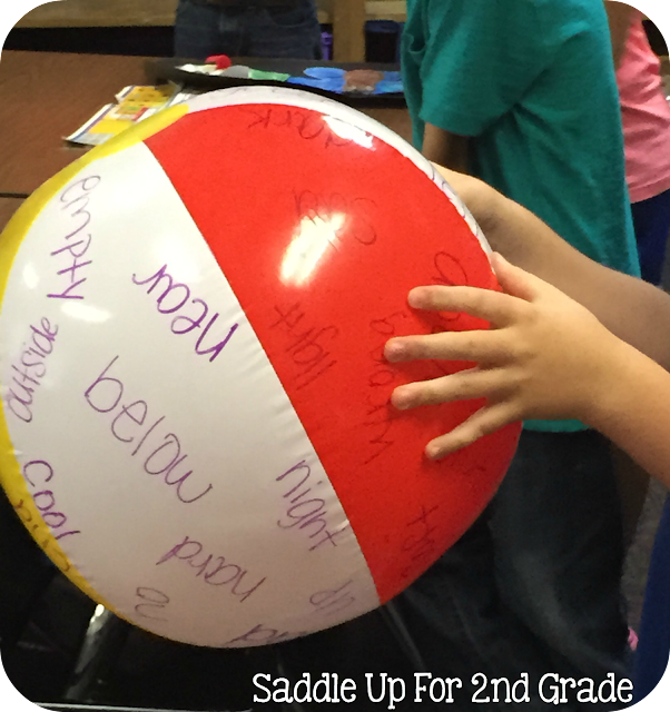 Beach Ball Vocabulary by Saddle Up For 2nd Grade