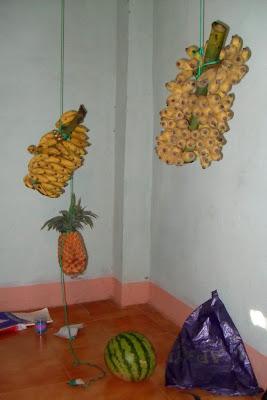 Бананы на черенке