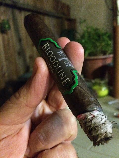 Bloodline OPA Maduro cigar 5